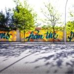 Ospedali: dal muro istoriato al muro di gomma