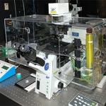 Regina Elena, super microscopio ad alta risoluzione: lotta ai tumori senza più segreti